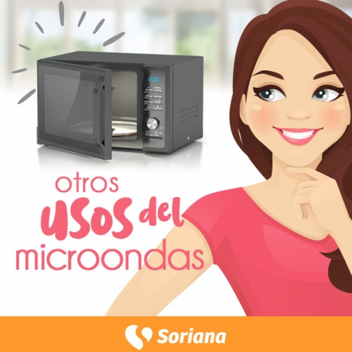 1005-microondas-01-02